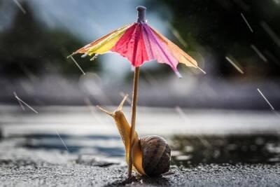 На выходных на Кипре ожидается дождливая погода