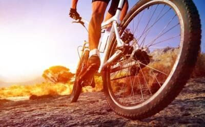 Власти выделят субсидии на покупку велосипеда