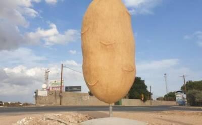 После «большой картошки» ― артишок и гранат
