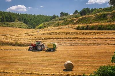 Киприоты считают, что государство обязано поддерживать местных фермеров