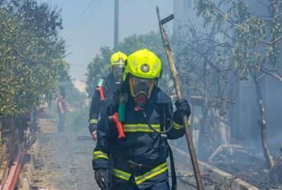 Кипрские пожарные спасли маленькую собаку из горящей квартиры в Деринье