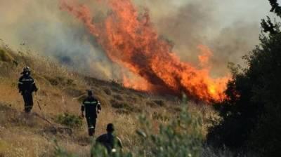 Два лесных пожара в районе Никосии