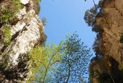 23-летний житель Дериньи заблудился в ущелье Авакас, забрался на скалу и не смог спуститься. Ему понадобилась помощь спасателей (видео)