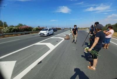 Возмущенные кипрские картофелеводы раздают водителям по 20 кг картофеля