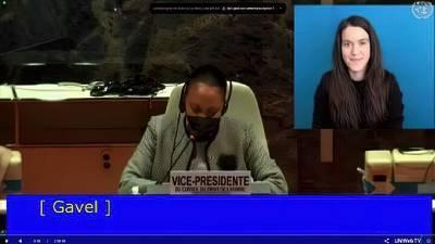 В ООН рассказали о нарушении прав общин Украинской Православной Церкви из-за антицерковного закона о переименовании