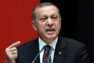 Северный Кипр посетит президент Турции