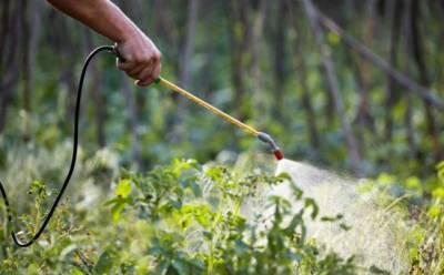 Кипру понадобилось в два раза больше пестицидов