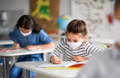 Минобразования напоминает об экспресс-тестах для возращения детей в школу