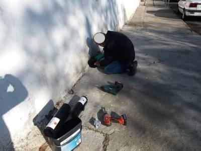 Ларнака активизирует усилия по борьбе с грызунами