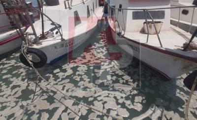 «Морская слизь» добралась до Фамагусты