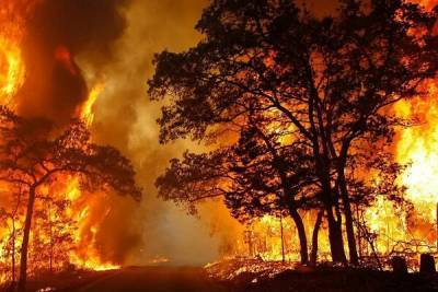 Деревню под Никосией охватило огнём