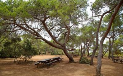 6+1 идеальных мест для пикника на природе