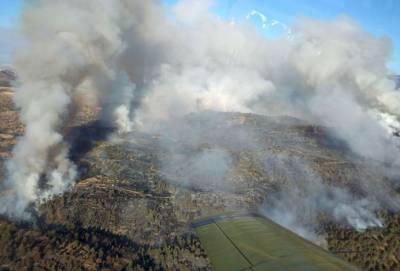 Большой пожар на Кипре взят под контроль. Его тушили всю ночь