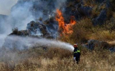 Осторожно: риск лесных пожаров очень высок