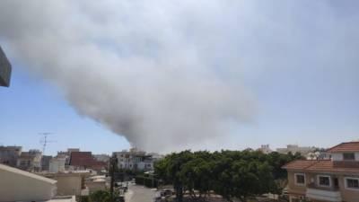 Пожар в районе Ипсонаса