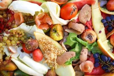 Сокращение пищевых отходов очень важная и обсуждаемая тема в последнее время