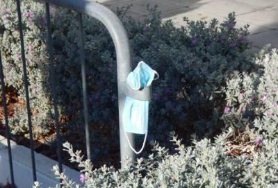 Циутис: ношение масок на улице может быть отменено