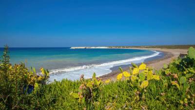 Кипр может ослабить ограничения на въезд российских туристов уже в июле