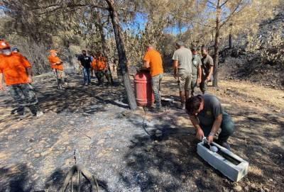 На выжженной огнем в предгорьях Троодоса земле установлены поилки и кормушки для животных и птиц