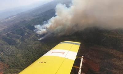 Правительство арендовало два пожарных самолета