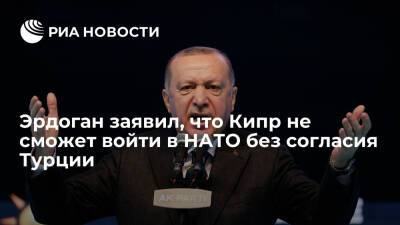Эрдоган заявил, что Кипр не сможет войти в состав НАТО без согласия Турции