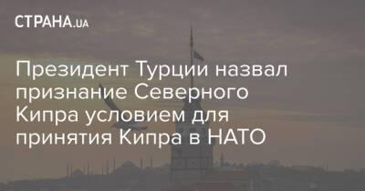 Президент Турции назвал признание Северного Кипра условием для принятия Кипра в НАТО