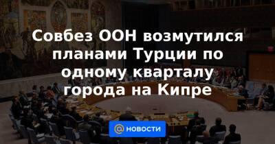 Совбез ООН возмутился планами Турции по одному кварталу города на Кипре
