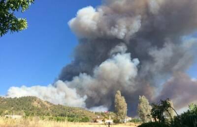 Изменения климата, заброшенные поля и другие причины пожаров