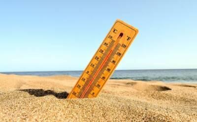 Выше нормы: метеорологи рассказали о погоде на ближайшие дни
