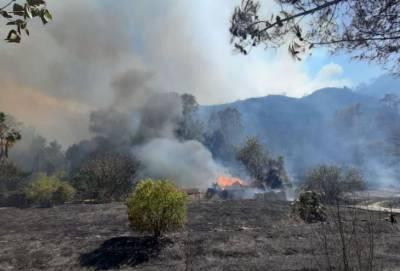 В пожаре в деревне Оду погибли четыре человека