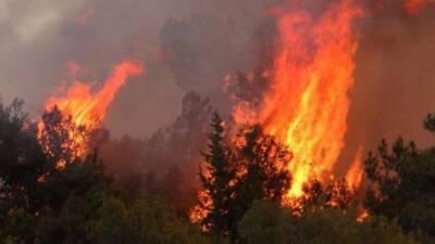 Пожары на юге Турции: шесть погибших и тысячи эвакуированных