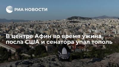 В Афинах во время ужина посла США Пайетта и сенатора Менендеса упал тополь