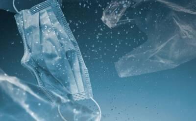 Подминистерство шипинга и кипрские исследователи объединяют усилия против пластикового загрязнения