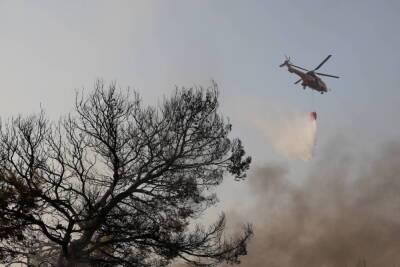 Средиземное море — «очаг лесных пожаров»