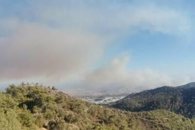 На Кипре бушует сильный пожар