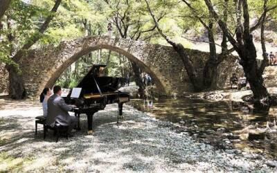 Рояль в кустах: новый концерт проекта The Piano Tour