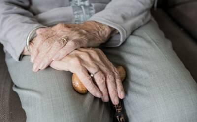 Подать заявку на пособия и пенсии можно будет онлайн