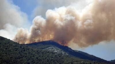 На западе Кипра разгорелся лесной пожар