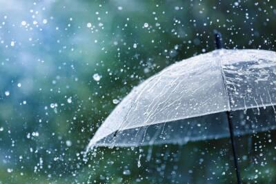 Дождь перед теплыми выходными
