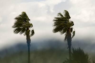 Из-за урагана Никосия осталась без электричества
