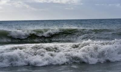 Найдено всплывшее тело в море Ледис Майл
