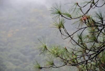 7 сентября на Кипре ожидаются дожди с грозами